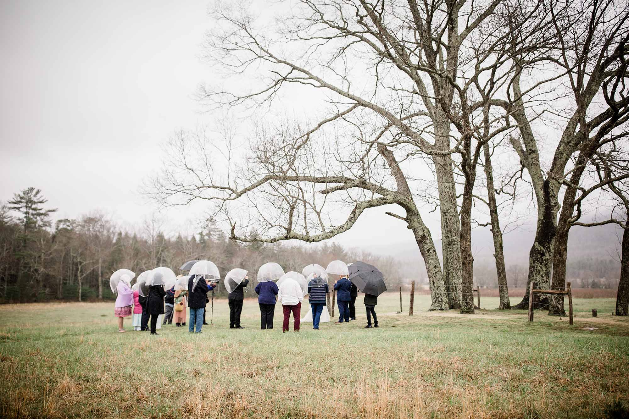 Elope in Cades Cove at LeQuire Cemetery Overlook